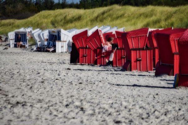 Strandkörbe in Ahrenshoop