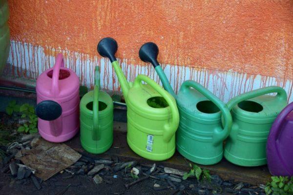 Urban Gardening im Münchner Rosengarten