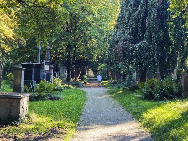 Stille Wege auf dem Südfriedhof