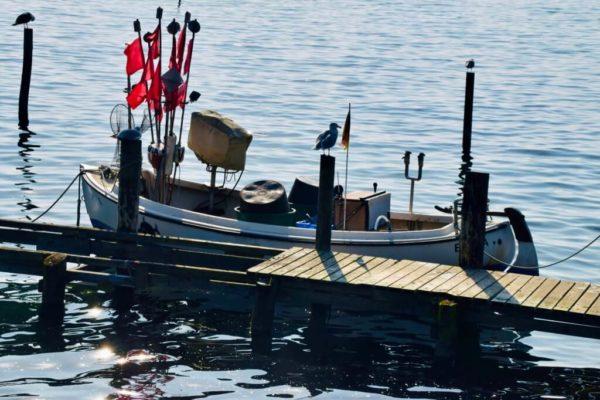 Fischerboot in Vitt