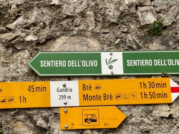 Pfad der Oliven nach Gandria