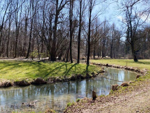 Hirschau im Englischen Garten