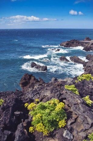 Küste bei Fuencaliente