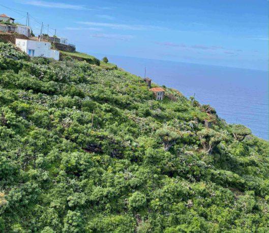 La Palma: Küstenstrich im Barlovento