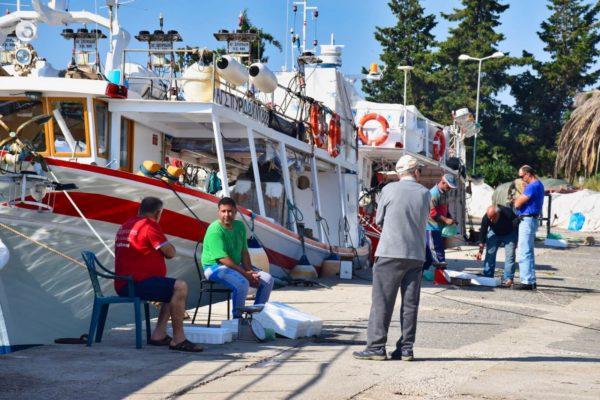 Fischhafen von Petriti