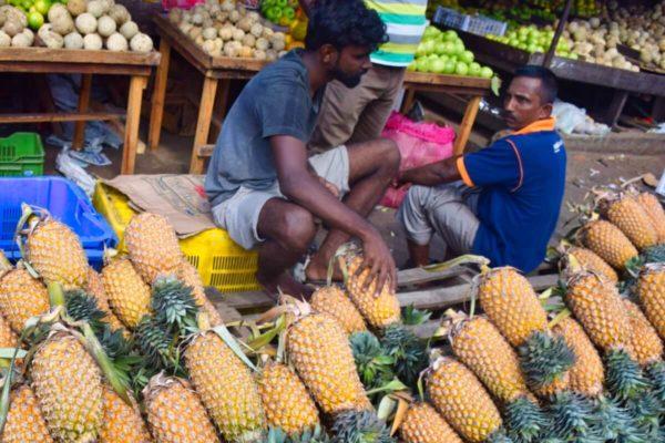 Ananasstand auf einem Markt in Sri Lanka
