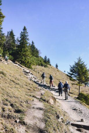 Aufstieg zum Jochberg-Gipfel