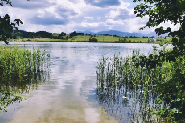 Froschhausener See