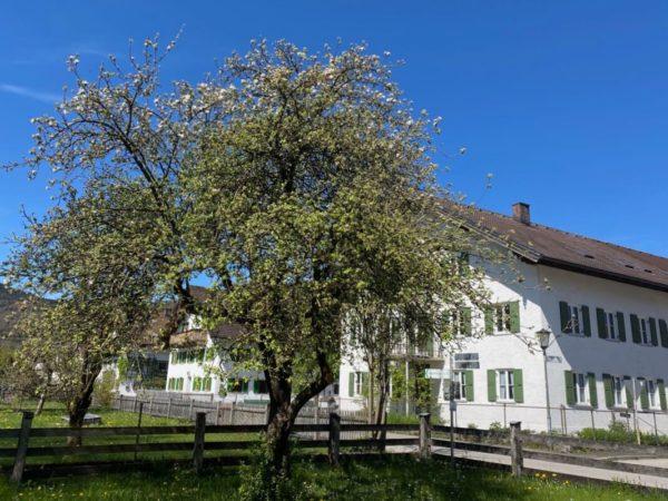 Bauernhäuser in Schlehdorf