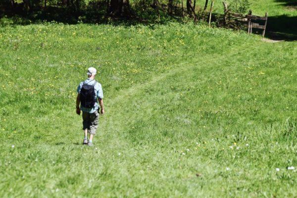 Rückweg nach Schlehdorf über die Wiesen