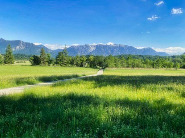 Murnauer Moos mit Alpenblick