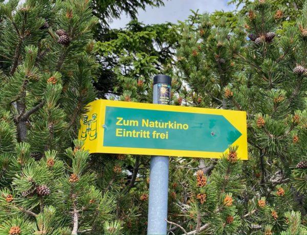 Naturkino auf den Gipfel des Wank
