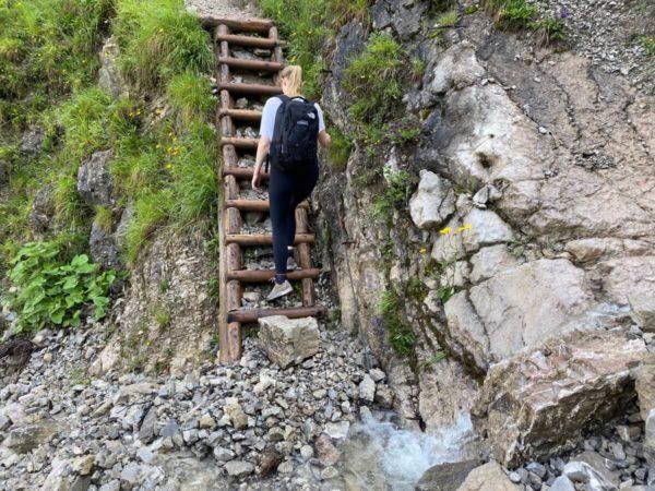 Wanderpfad auf der Wanderung über die Esterbergalm auf den Wank