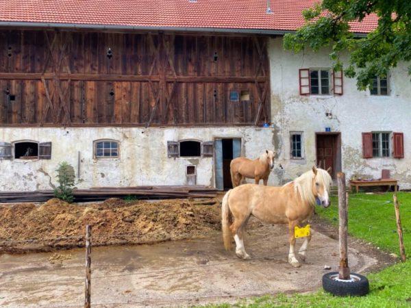 Bauernhof am Wegesrand