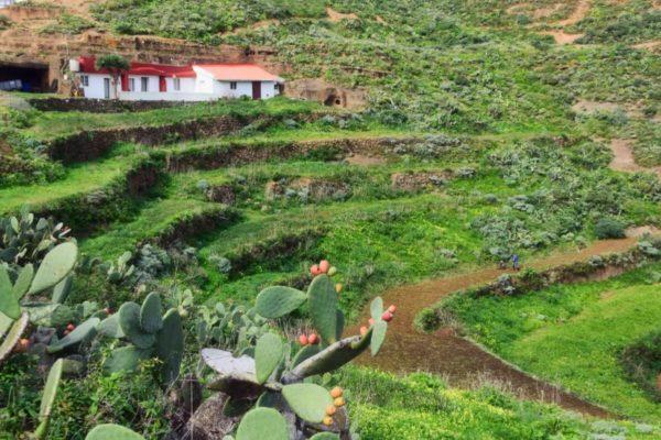 Teneriffa für Individualisten: Bauernland im Anaga-Gebirge