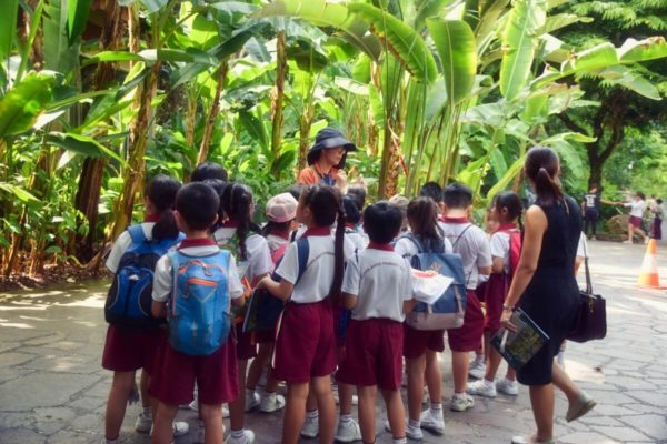Citytrip Singapur: Schulausflug in den Botanischen Garten