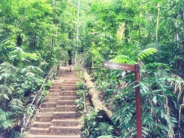 Citytrip Singapur: Bukit Tina Nature Reserve