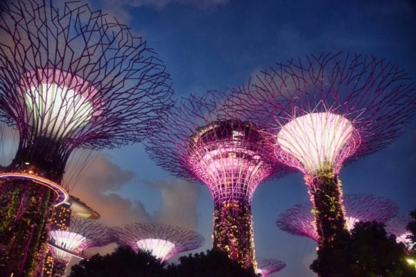 Citytrip Singapur: Gardens by the Bay – Supertrees