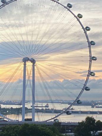 Citytrip Singapur: Riesenrad mit Hafen