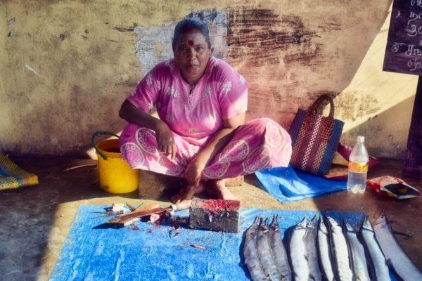 Sri Lankas Norden: Fischhändlerin in Jaffna