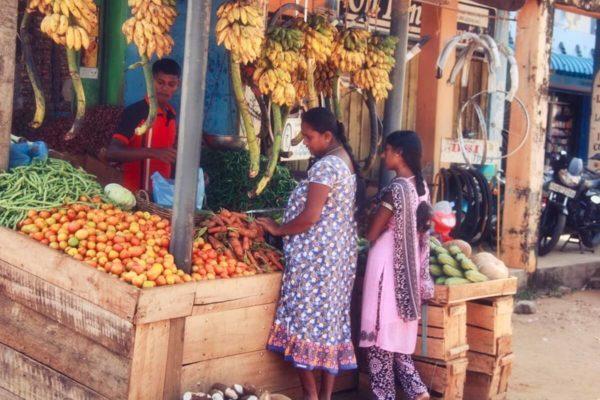 Sri Lankas Norden: Gemüsestand in Batticaloa